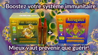 Coronavirus-Astragale-Astragalus-Flos-Lonicera-Phytoaura
