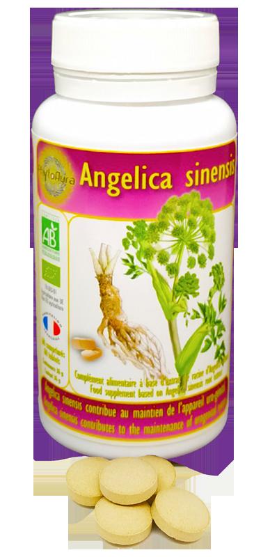 Angelica-Sinensis-Bio-Comprimes-Phytoaura